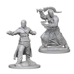 Pathfinder Battles Unpainted Minis - Human Male Monk
