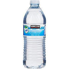Water (Kirkland Signature 33.8oz) - Large
