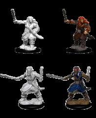 Nolzur's Marvelous Unpainted Miniatures - Bandits