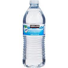 Water (Kirkland Signature) 16.9oz - Small