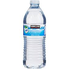 Water (Kirkland Signature) 16.9oz - Small