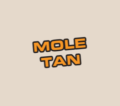 Acrylic: Mole Tan