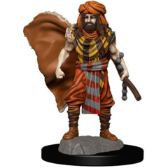 Icons of the Realms Premium Miniatures - Human Druid Wave 4