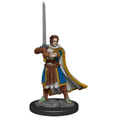 Icons of the Realms Premium Miniatures - Human Cleric Wave 4