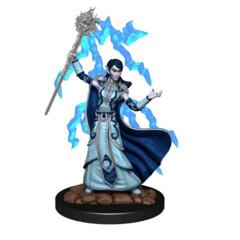 D&D Prepainted Premium Miniatures: Female Elf Wizard - W6