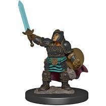 Dungeons & Dragons - Premium Miniatures - Dwarf Paladin