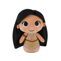 Disney Princess Pocahontas 7