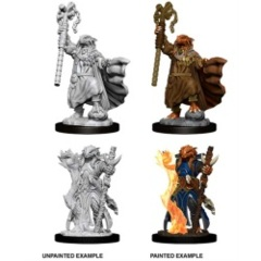 D&D - Nolzur's Marvelous Unpainted Miniatures - Dragonborn Sorcerer