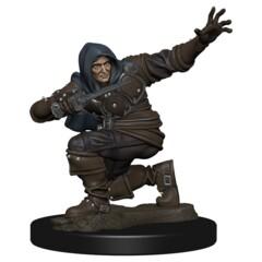Pathfinder Battles - Premium Miniatures - Human Male Rogue