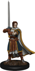 Icons of the Realms - Human Cleric