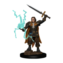 Pathfinder Battles - Premium Miniatures - Human Male Cleric