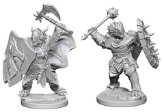 D&D - Nolzur's Marvelous Unpainted Miniatures - Dragonborn Male Paladin