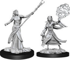 D&D Nolzur's Marvelous Miniatures - Elf Sorcerer