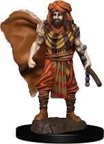 Dungeons & Dragons - Premium Miniatures - Human Druid