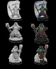 Nolzur's Marvelous Miniatures - Water Genasi Male Druid