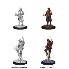 Nolzur's Marvelous Miniatures - Male Tiefling Sorcerer