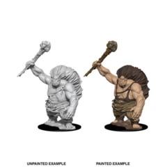 Nolzur's Marvelous Miniatures - Hill Giant