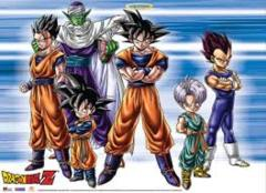 Dragon Ball Z Fabric Poster