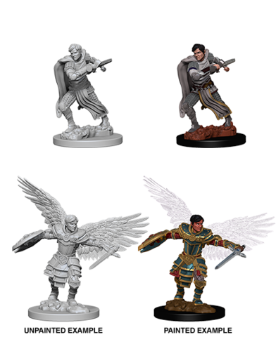 Aasimar Male Fighter Dungeons Dragons Nolzurs Marvelous