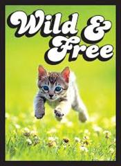 Wild & Free Kitten - (Legion) Small Sleeves - 60ct