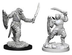 Nolzur's Marvelous Unpainted Miniatures - Dragonborn Female Paladin