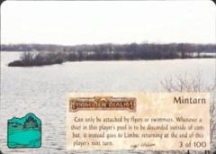 003/100 Mintarn