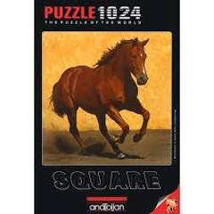 Anatolian Puzzles  Puzzle: 1024 Adobe Run Iii