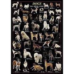 Ricordi Puzzles Puzzle: 1000 Dogs